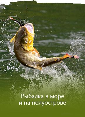 Рыбалка в море и на полуострове